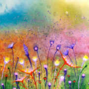 Wildflowers No.1